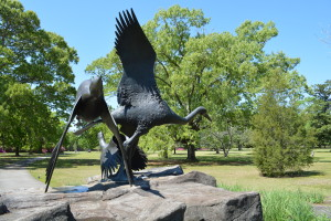 Finding the Sweet Spot: Something for Everyone at Brookgreen Gardens