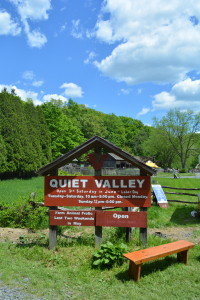 Animal Frolics Exist (Who Knew?): Quiet Valley Living Historical Farm