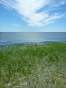 A Perfect Day on Cape Cod Bay (First Encounter Beach, Eastham)