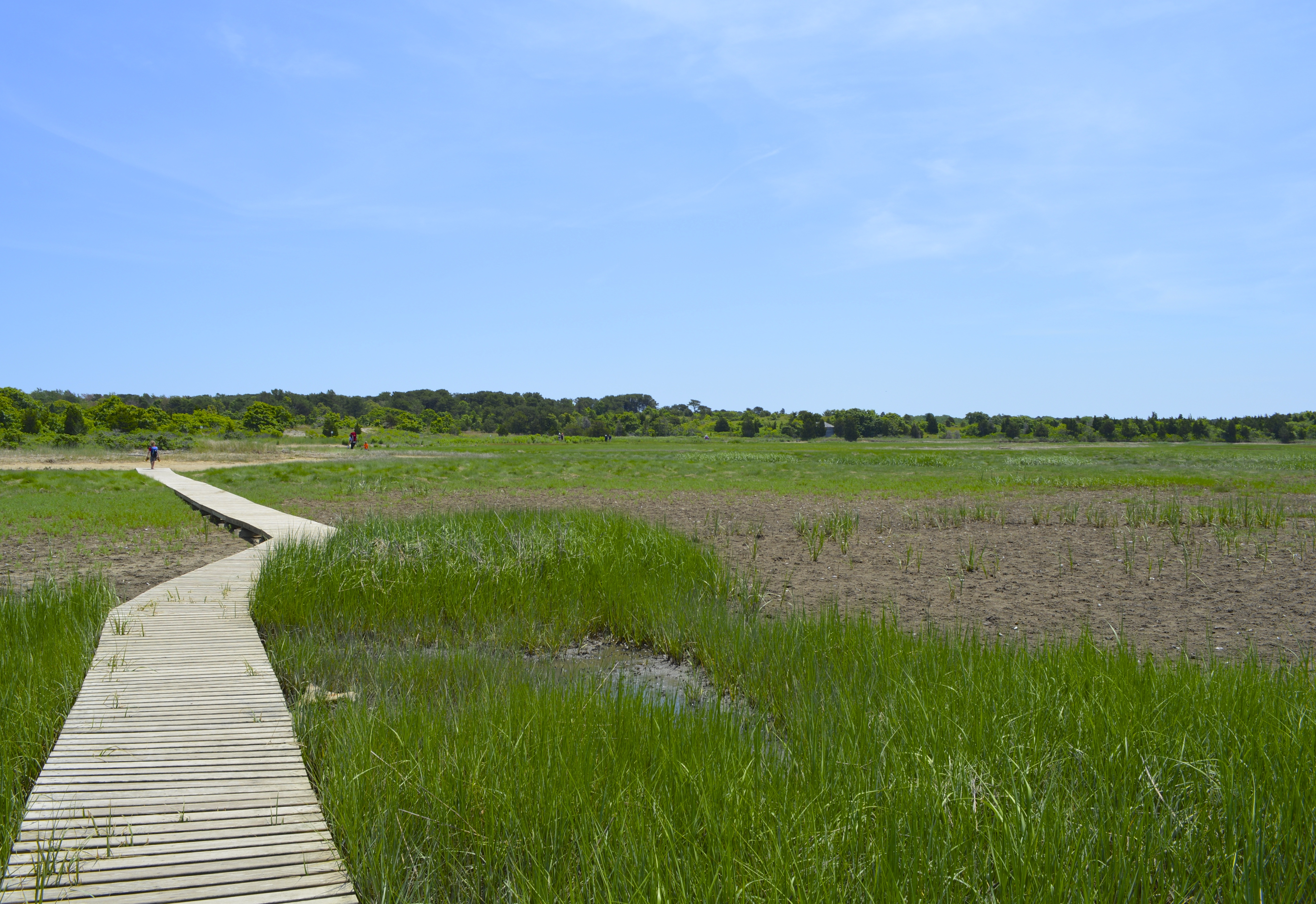 Wellfleet Bay Nature Center
