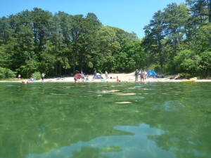 Dip Your Camping Cup into a Kettle Pond: Nickerson State Park, Cape Cod