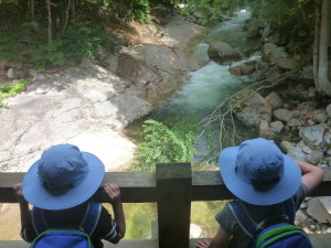 A Perfect First Day in the White Mountains: Franconia Notch State Park