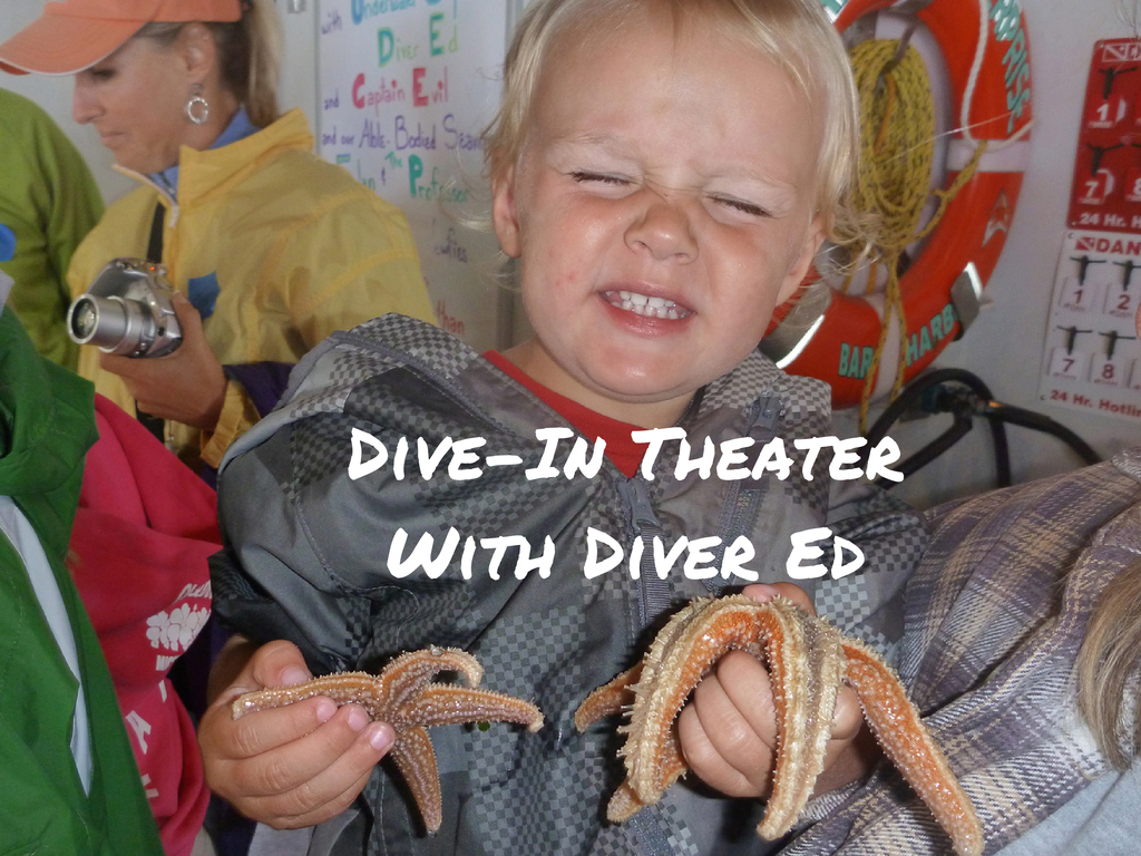 Dive-In Theater with Diver Ed