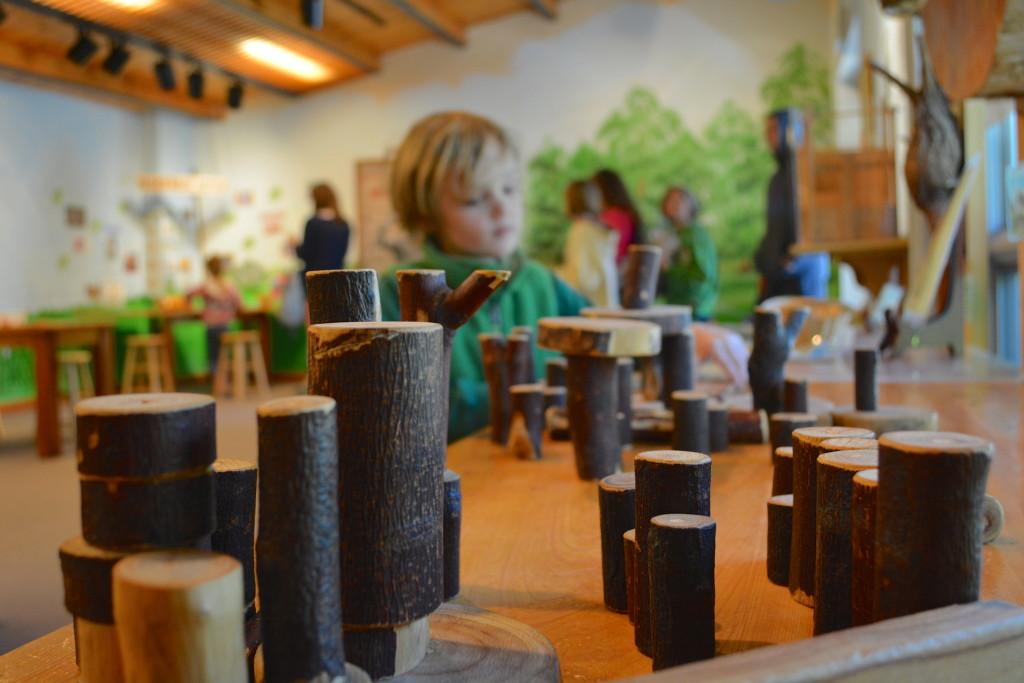 Brookgreen Gardens Childrens Discovery Room
