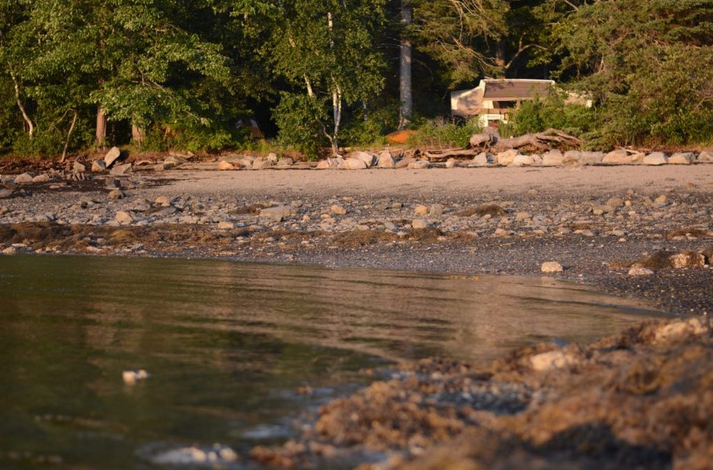 The Perfect Campsite: 10 Questions to Ask (Go RVing Blog)