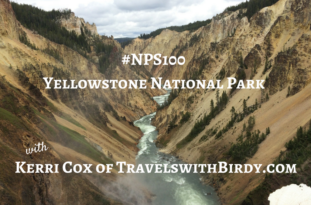 #NPS100: Yellowstone National Park with Kerri Cox