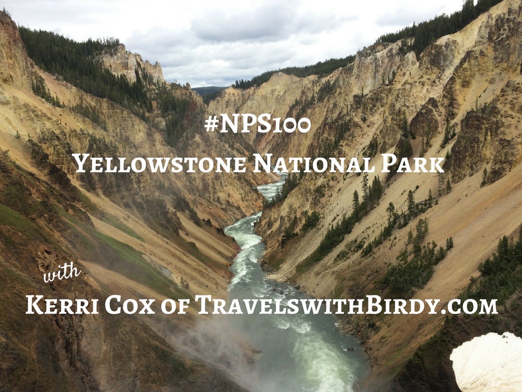 #NPS100Yellowstone National Park