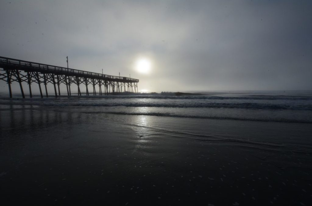 RVFTA #115 Greetings from Myrtle Beach, South Carolina