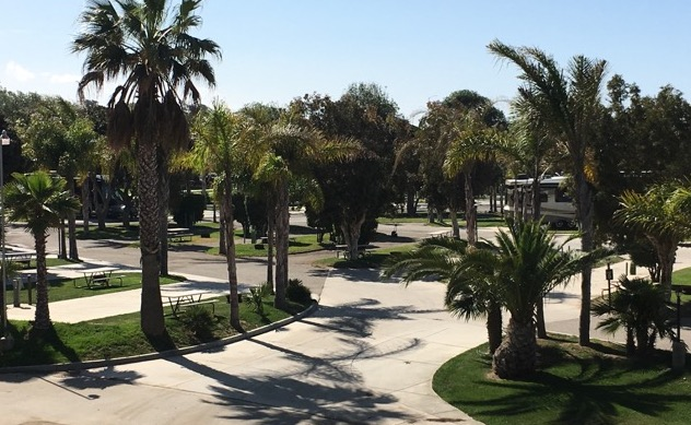Campground Review 61 Ventura Beach Rv Park In California