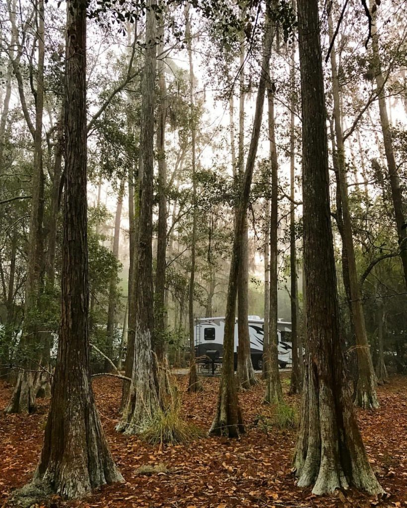 Campground Review: Disney's Fort Wilderness Resort & Campground in Disney World, Florida