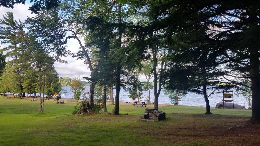 Brown Tract Pond picnic area