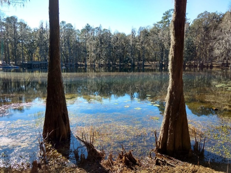 Spirit-of-the-Suwannee-Music-Park-and-Campground-2