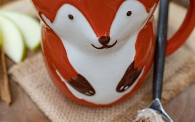 Apple Cider Mug Cake from The Campground Gourmet