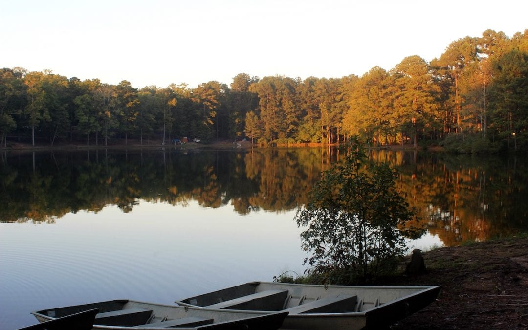 5 Amazing Georgia State Park Campgrounds from RVFTA