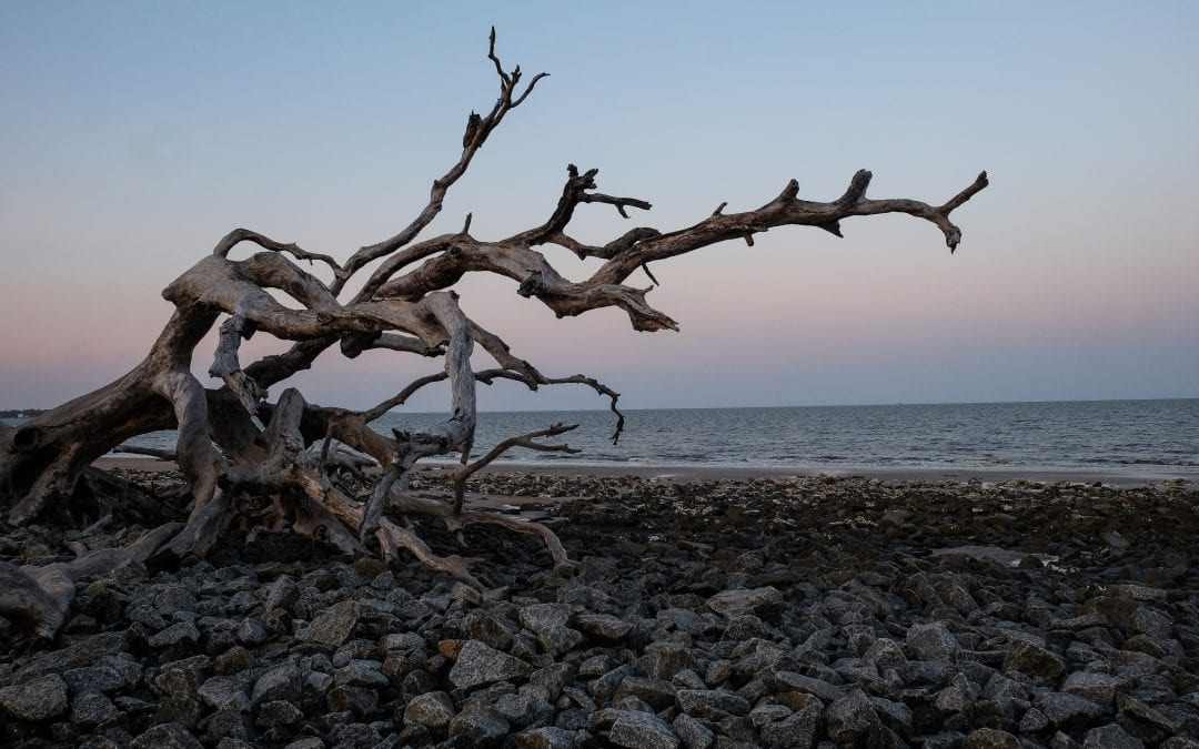 Jekyll Island: A Trip Planner from The RV Atlas