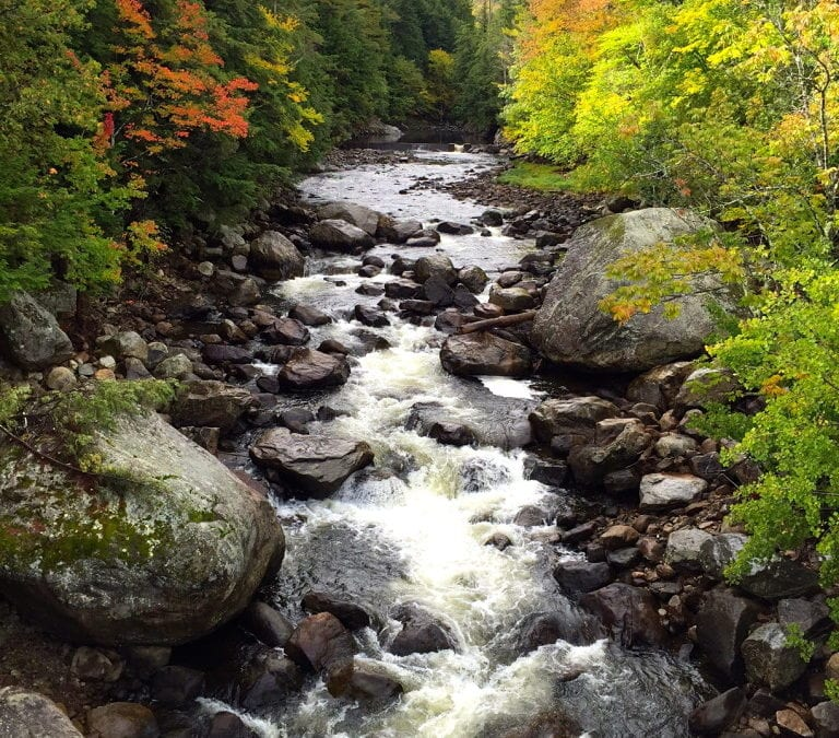 Underrated Camping Destinations: New York State