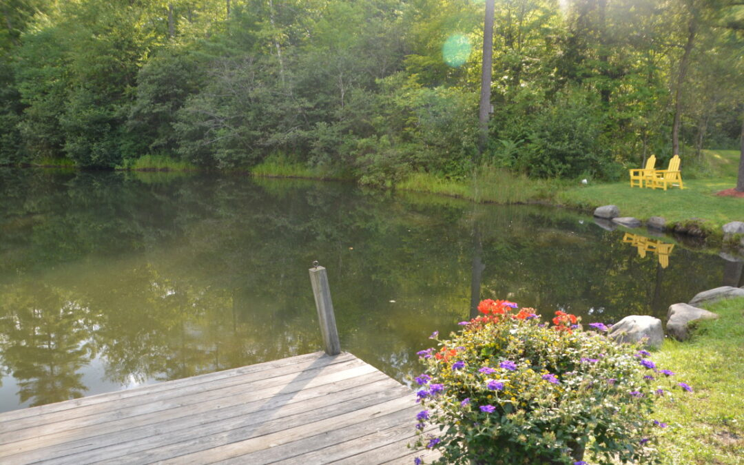 Catching the Spirit of Vermont at the Quechee/Pine Valley KOA